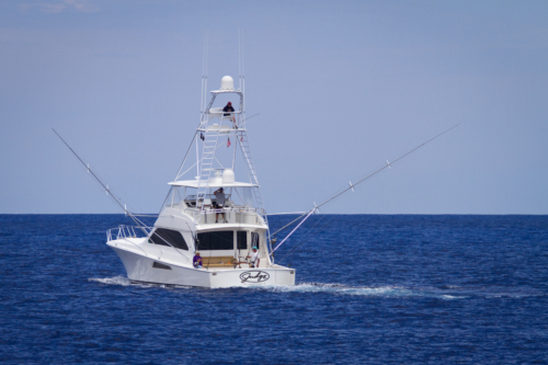 Stone Harbor Marlin Tournament-3701